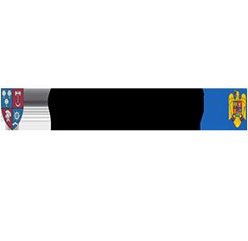 Primaria Mihailesti